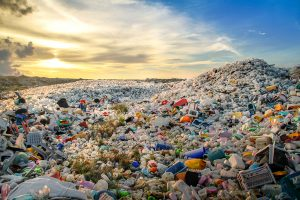 Plastic bottles at landfill